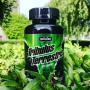 Трибулус Maxler Tribulus 1200 mg 60 капс